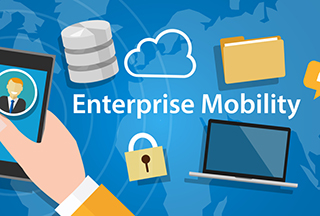 Blog: Minimize the TCO of Your Enterprise Mobility Solutions